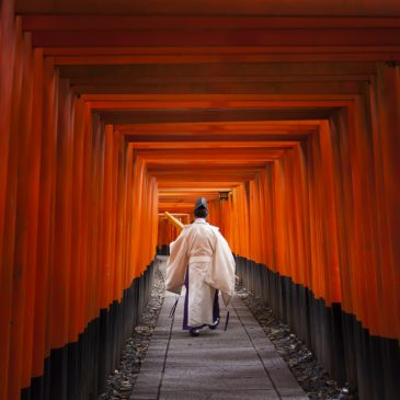 What time to go to Fushimi Inari for a photographer