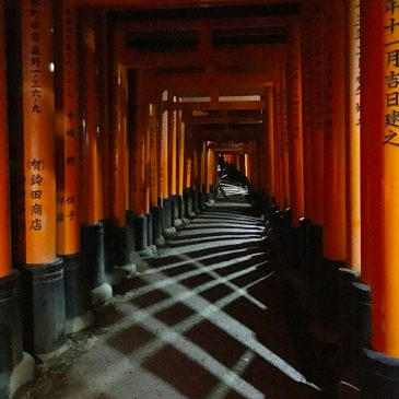 Fushimi Inari shrine at night, Kyoto. First time as a photographer.